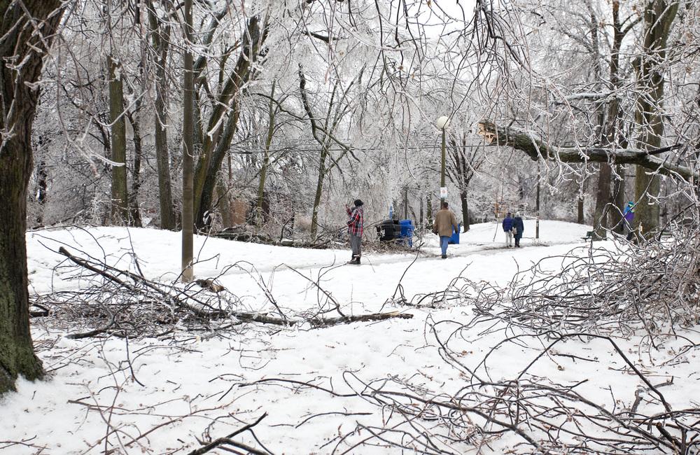 Toronto Ice Storm 2013-100dpi-9.jpg