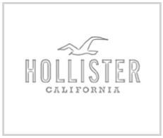 HOLLISTER.png