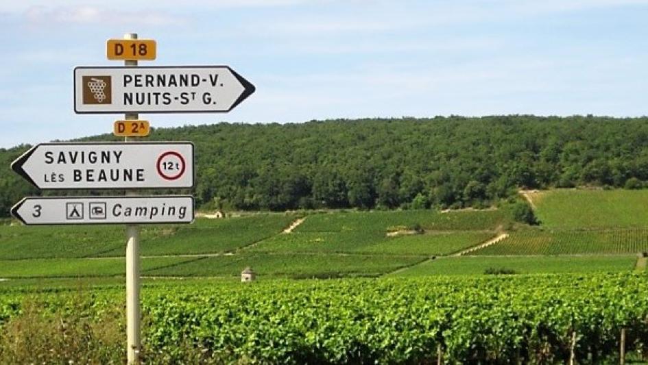 Savigny countryside.png