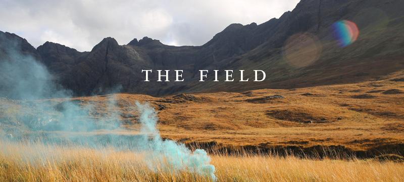 thefield-header-v2.jpg