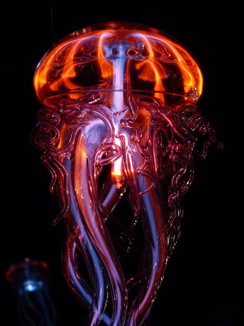 carnelian-jelly-fish.jpg