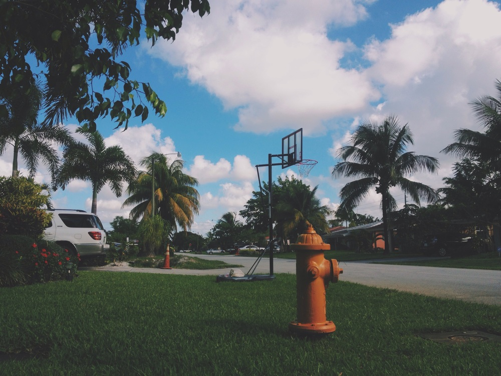 Staying in the calm outskirts of Ft Lauderale for some days, in lazy Oakland Park.