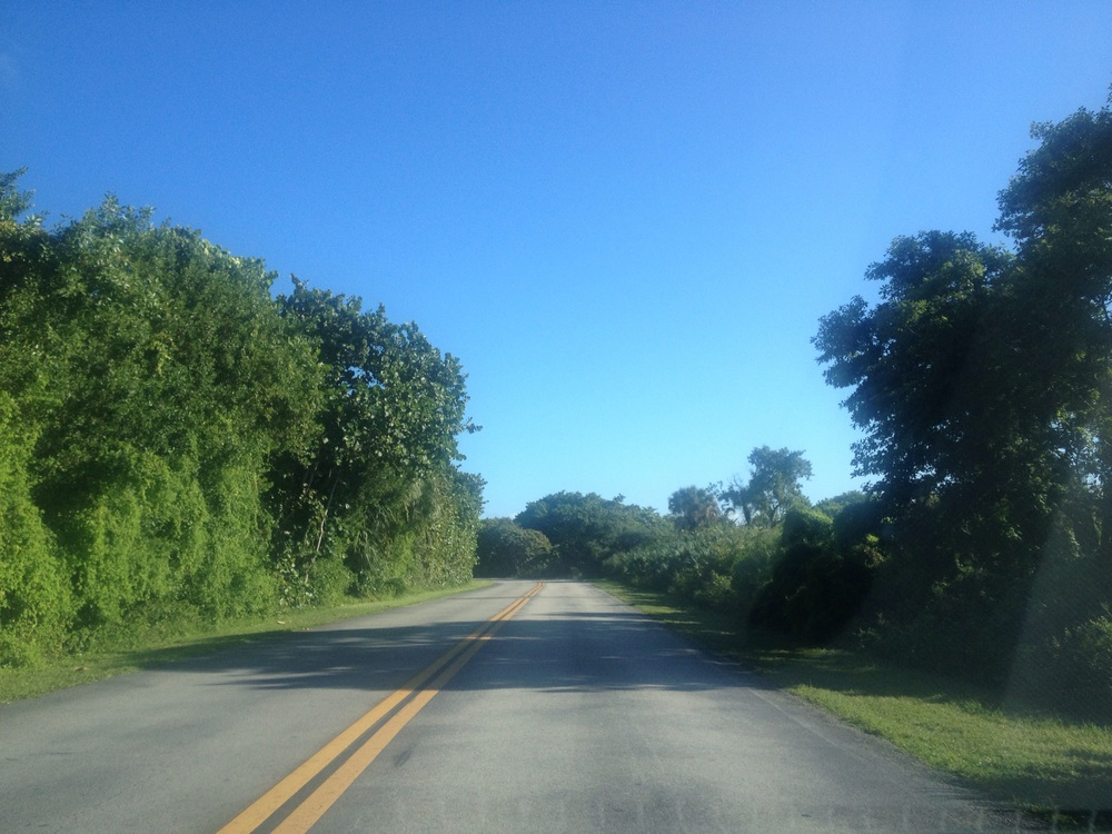 10-15 minutes from downtown Miami. Key Biscayne is a green and calm oasis.