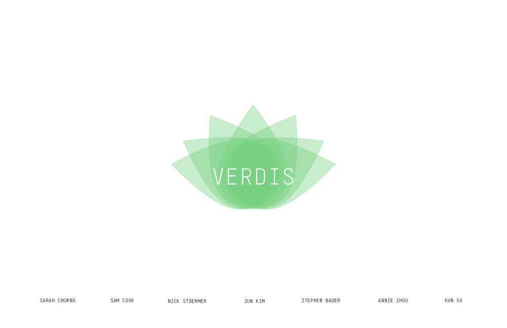 VERDIS Documentation.png