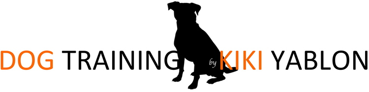 Dog Training by Kiki Yablon — Chicago, Illinois