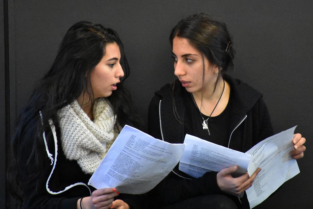 Bell shakespeare's education program at blacktown girls' high school. photo credit: luca altamore
