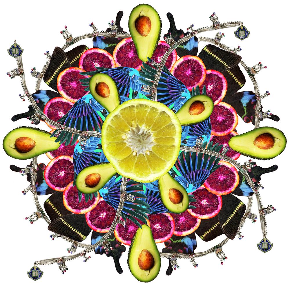 citrus mandala sm.jpg