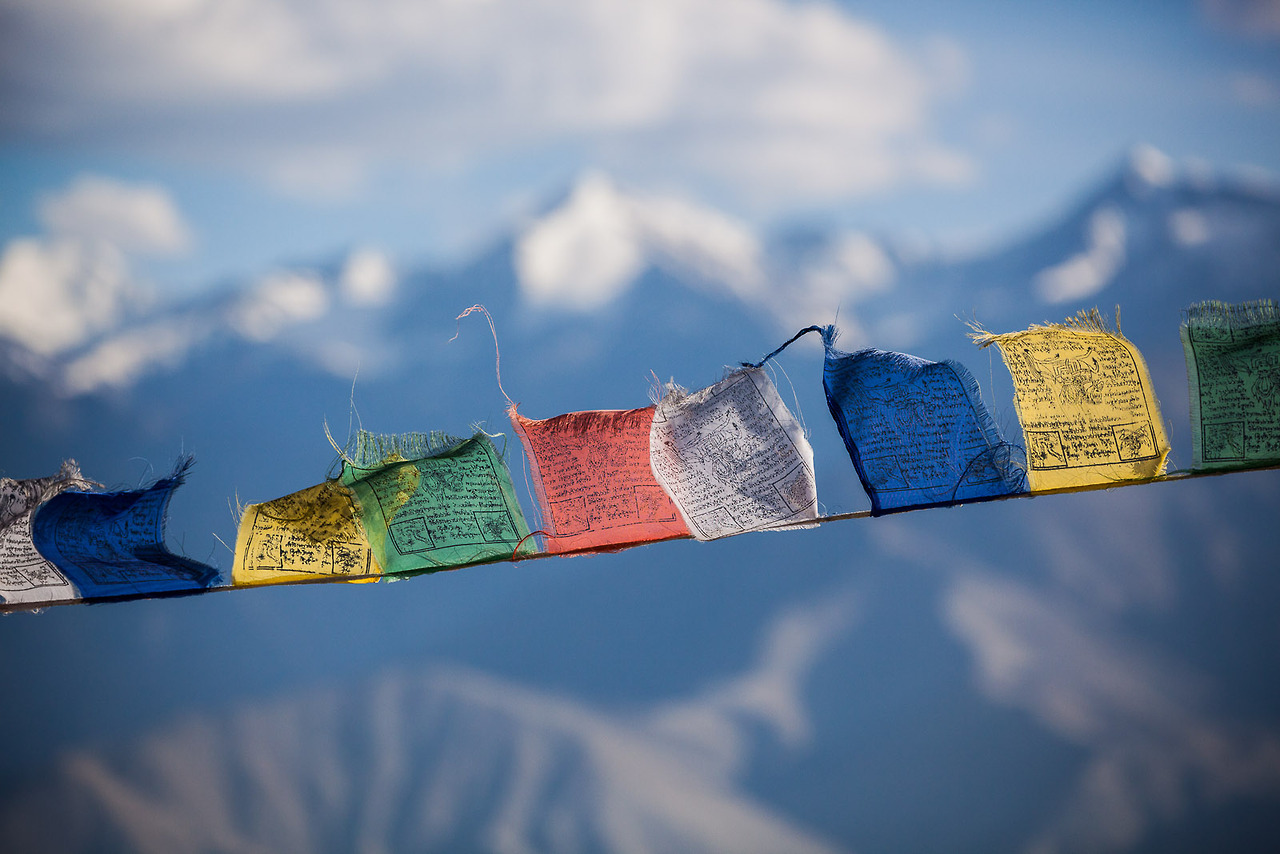meobserving :     Prayer flags, Leh, Ladakh