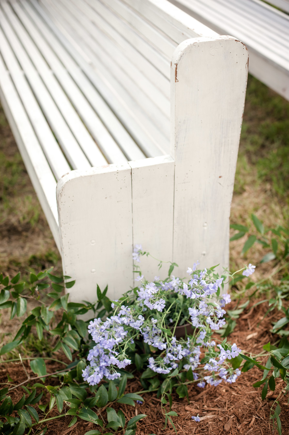 Church pews at an outdoor, Alabama Wedding. Photos by Kelli + Daniel Taylor Photography