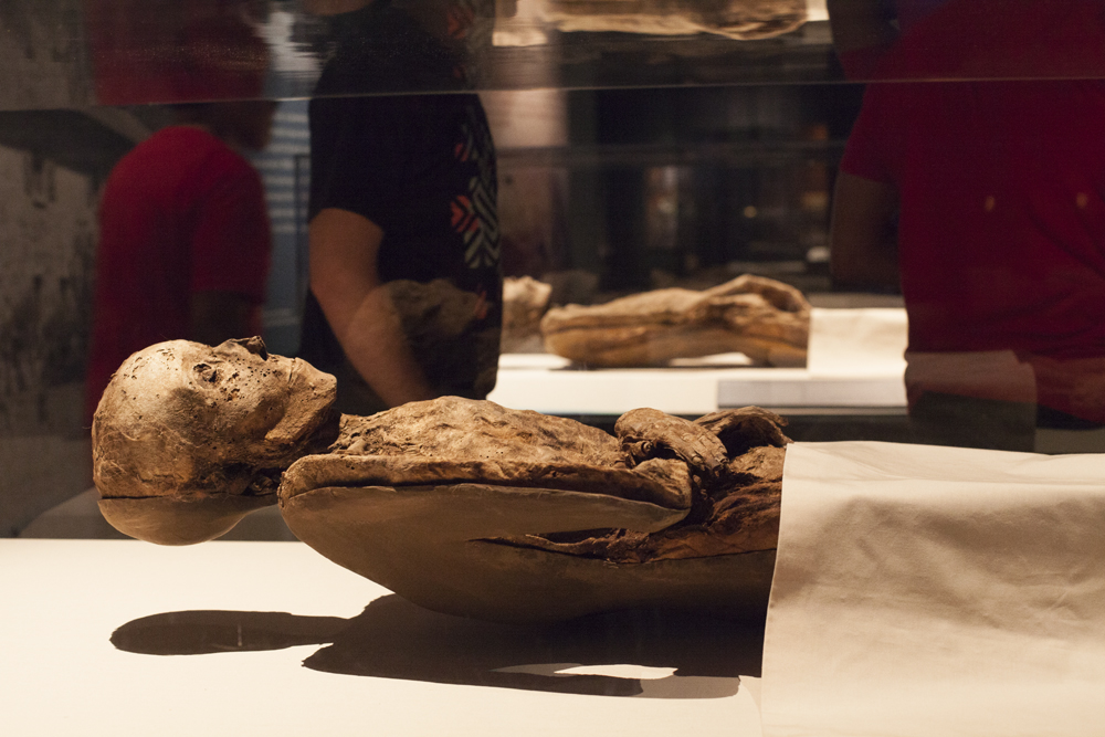 Incredible Mummies from various parts of the world and time periods (newest being 1994)