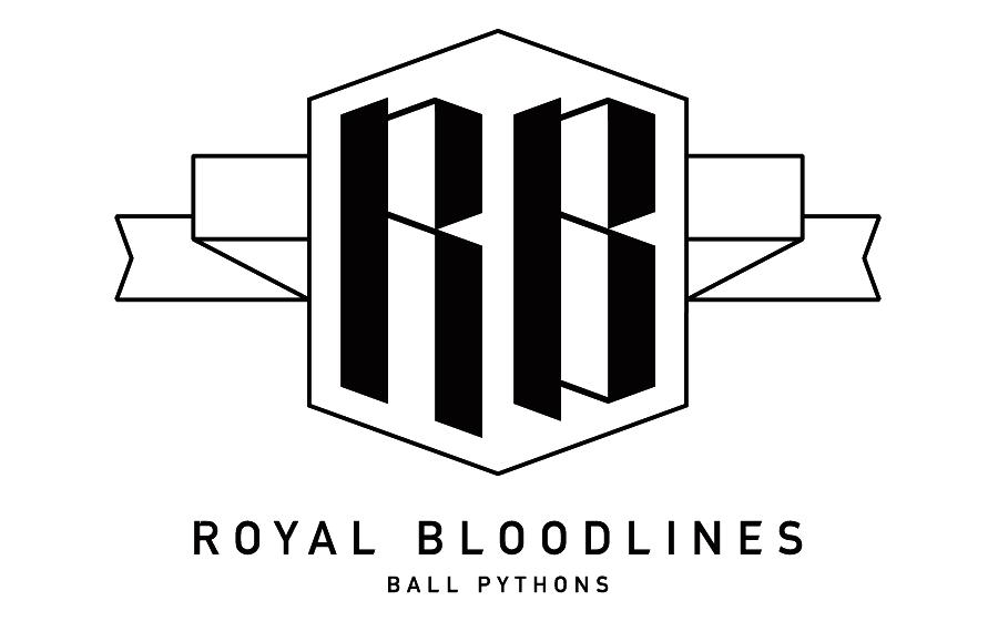 RoyalBloodlines_BallPythons.png