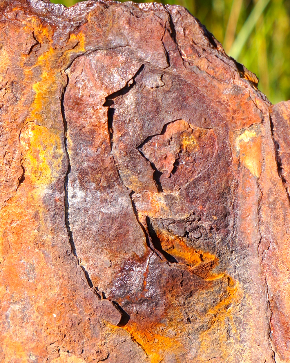Rust detail of old seawall