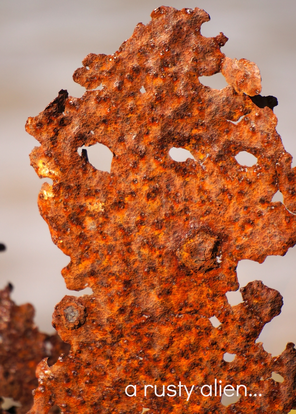 SP-Rust1.jpg