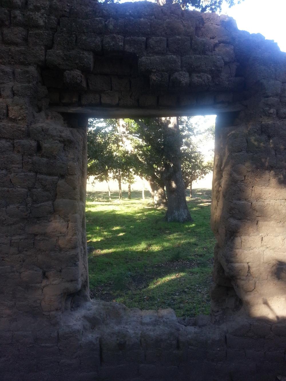 View through the ruin.