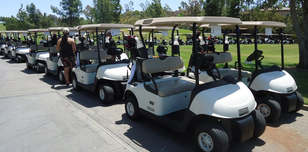 Carts ready to go Benefit 2014.jpg
