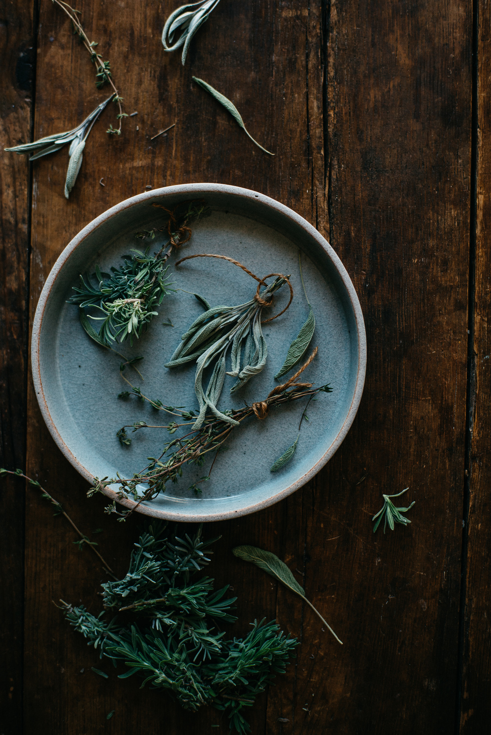 autumn herbs | dolly and oatmeal