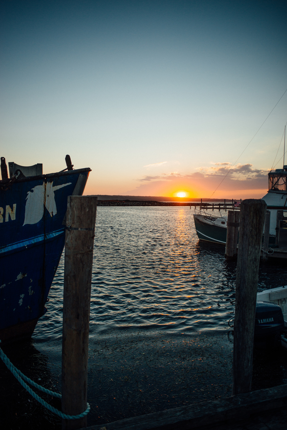 menemsha | dolly and oatmeal