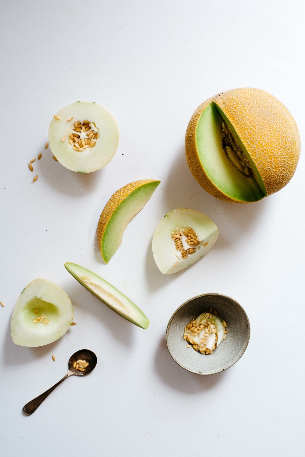 green cantaloupe + snow leopard melon | dolly and oatmeal