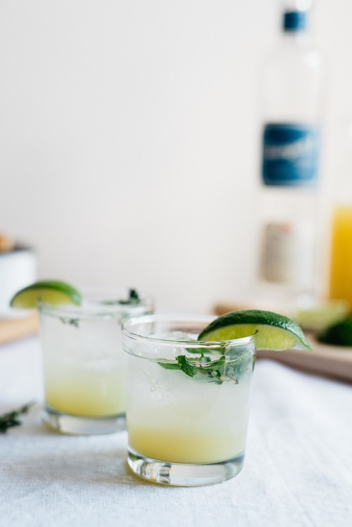 vodka gingerade w/ spring herbs