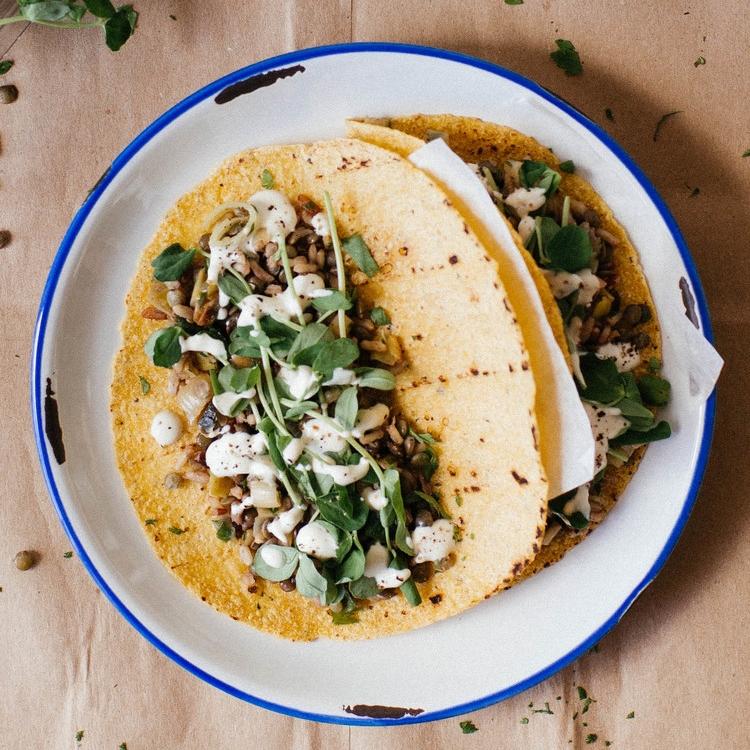 mujadra tacos w/ leeks, spring herbs & pea tendrils