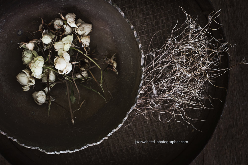 Flora2275.jpg