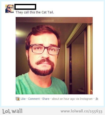 beard-and-mustache-called-the-cat-tail_255633-409x.jpeg