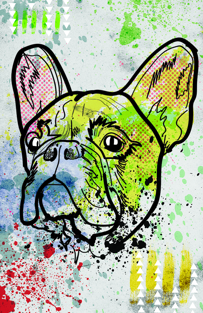 FrenchBulldogWEB.jpg