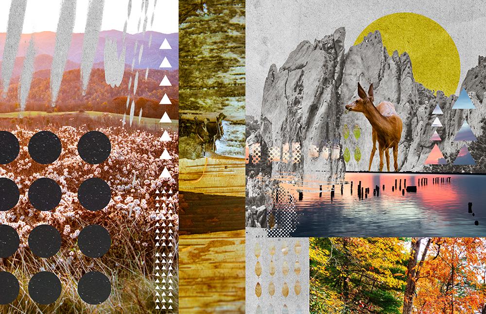 Naturemashup2web.jpg