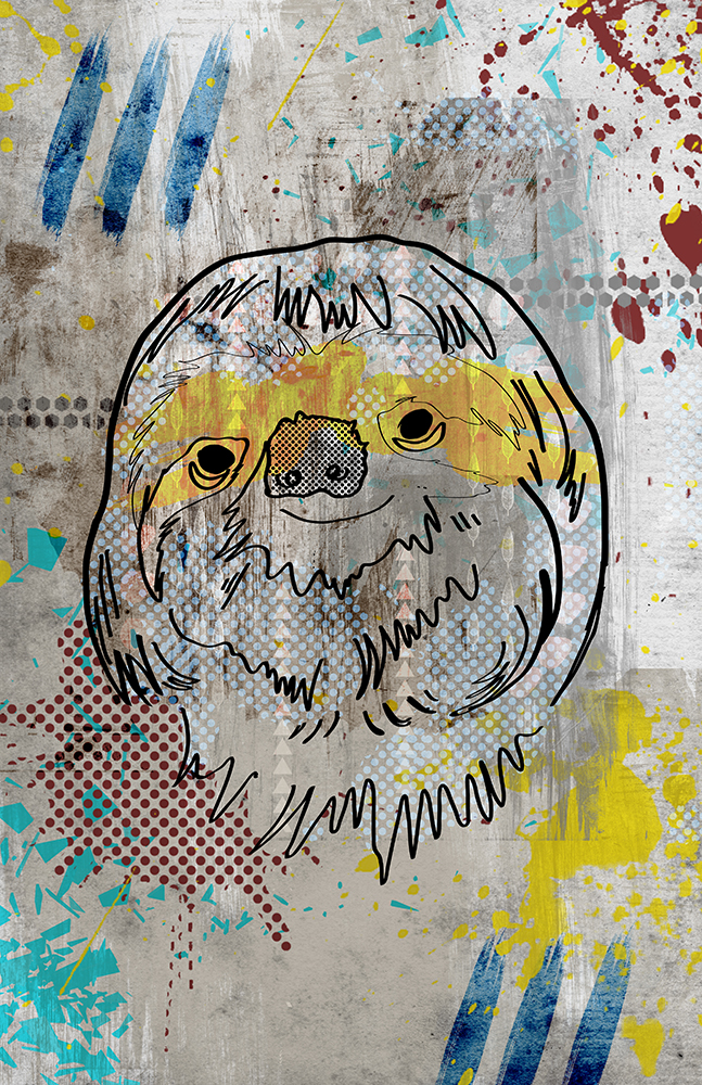 Slothweb.jpg