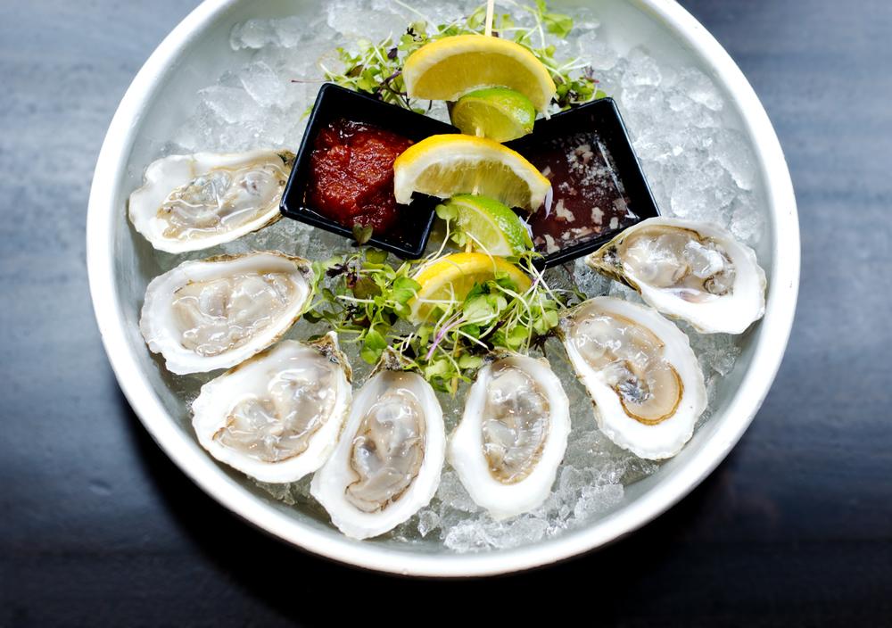 oysters full.jpg