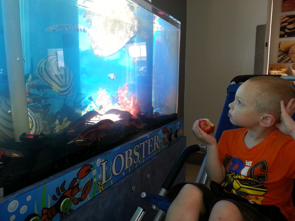 "At the ""Sensory Village"". Ezra enjoyed watching the bubbles inside the tank."