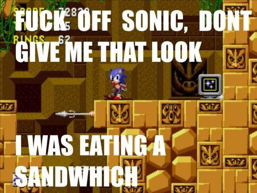 guywiththeflamingotattoo :      thesnorlaxx :      penishole :     Loool dat bitch and his foot tapping     LOOOOOOL i miss sonic     This sassy motherfucker here!