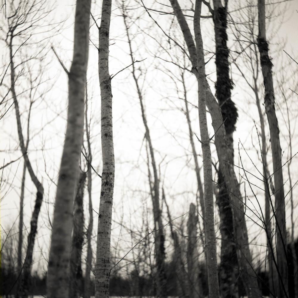 film-24.jpg