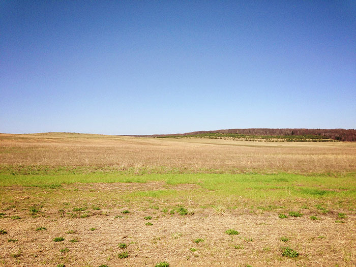 flight 93 memorial landscape