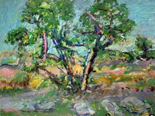 "Eaton Canyon, CA , oil on paper, 32x40"", 2009. Private collection, NM."