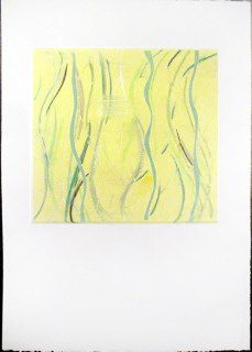 "Yellow Warp 2, monoprint, 44x30"", 2014."