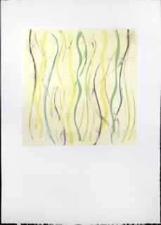 "Yellow Warp 3, monoprint, 44x30"", 2014."
