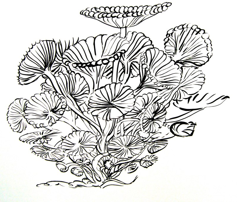 "Sea Anemone , sumi ink on paper, 30x42"", 2010."