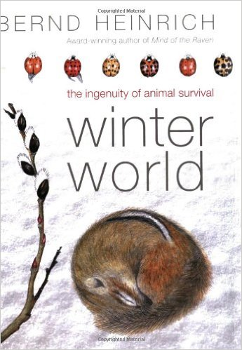 From flying squirrels to grizzly bears, and from torpid turtles to insects with antifreeze, the animal kingdom relies on some staggering evolutionary innovations to survive winter. Unlike their human counterparts, who must alter the environment to accommodate physical limitations, animals are adaptable to an amazing range of conditions.