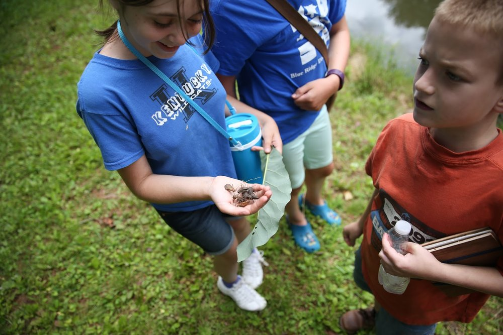 2017 Discovery Day Camp-71.jpg