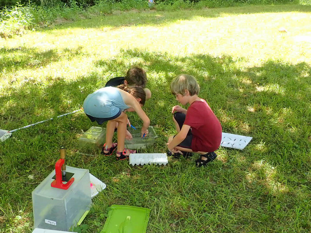 Discovery Day Camp Galax-23.jpg