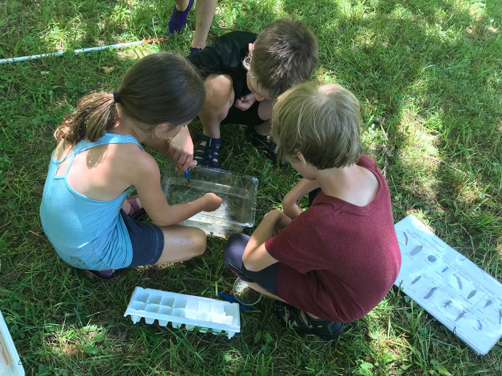 Discovery Day Camp Galax-24.jpg