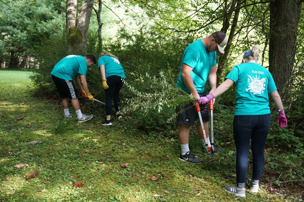 E&H students tackling the thicket
