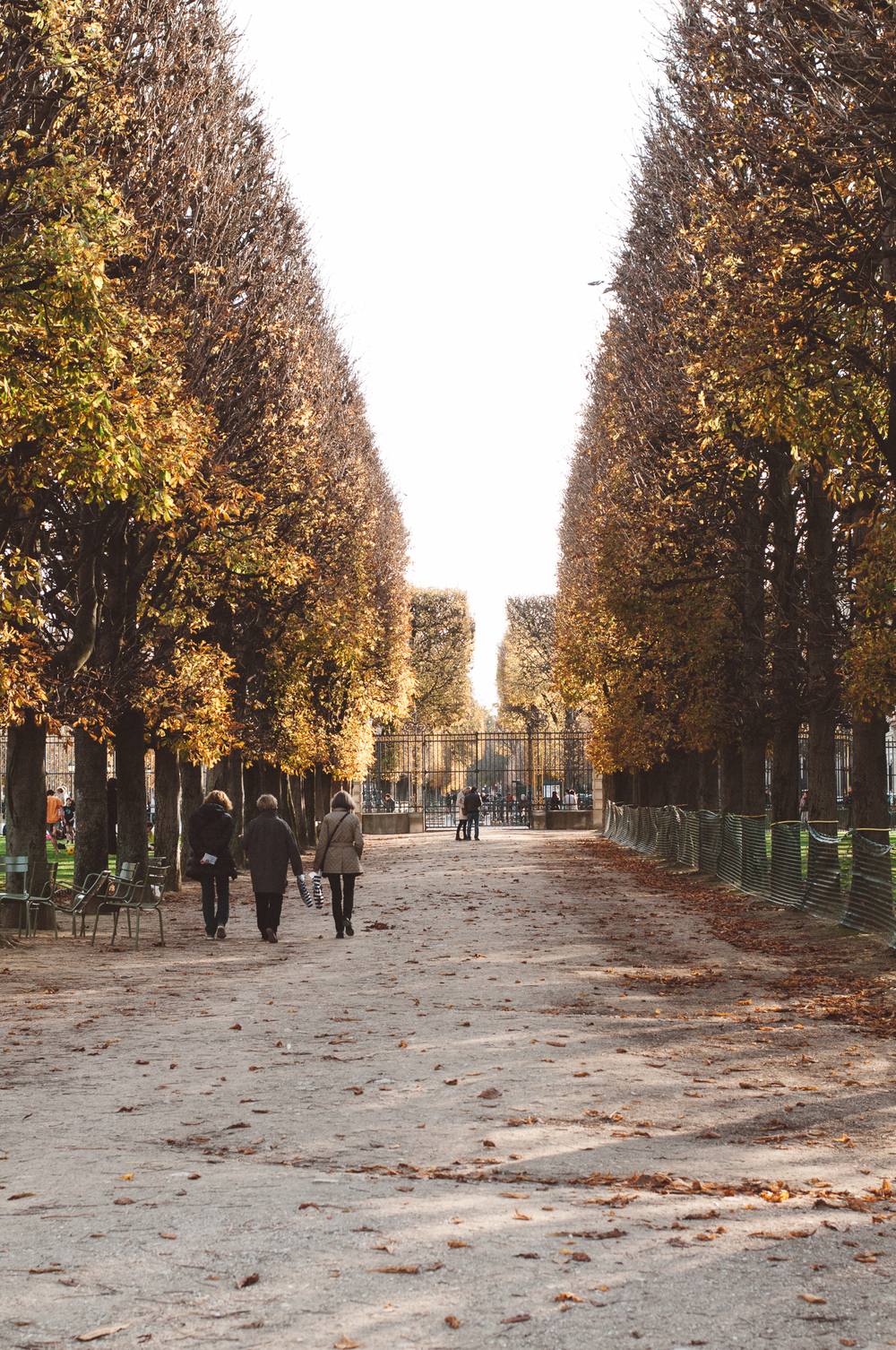 Luxembourg Gardens in the fall
