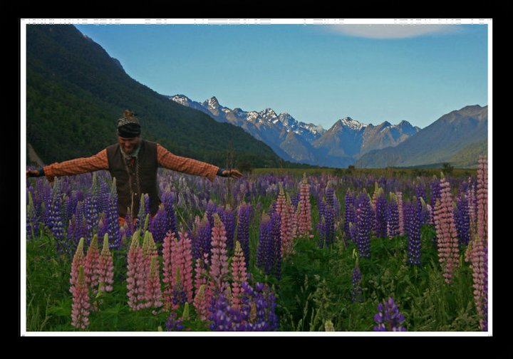 Jyoti in the Lupines, NZ, 2010