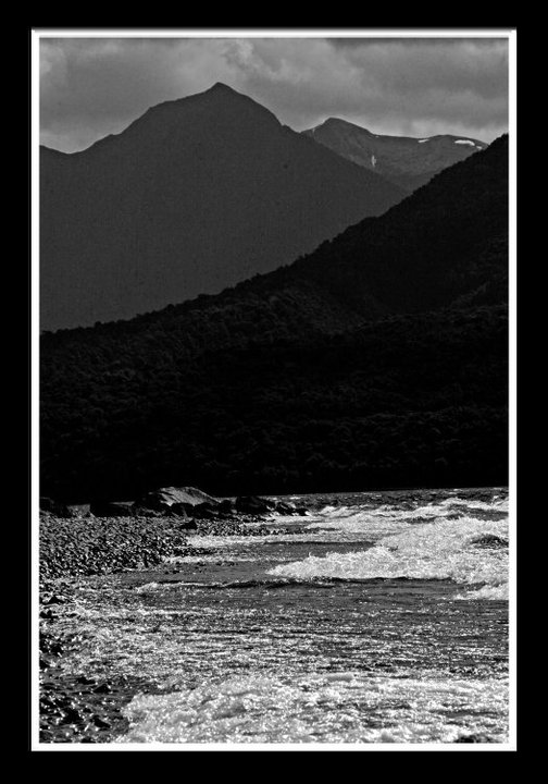 NZ, 2010