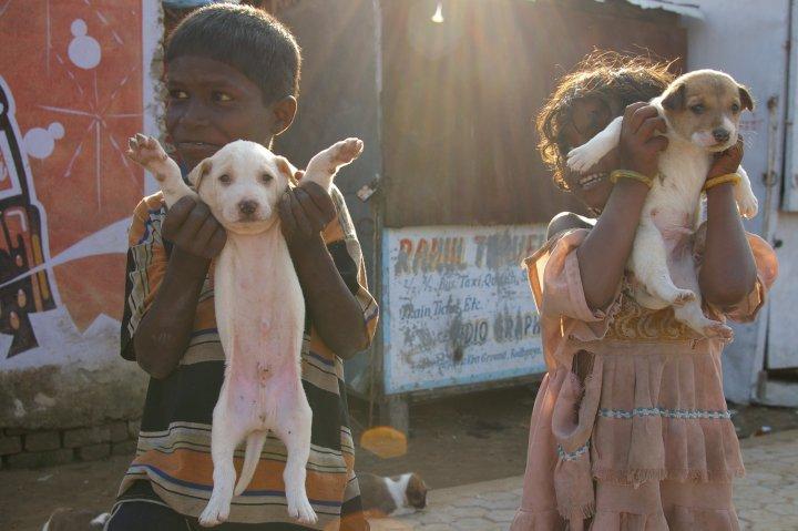 Proud kiddos wanting to show their puppies - Bodhgaya, Bihar