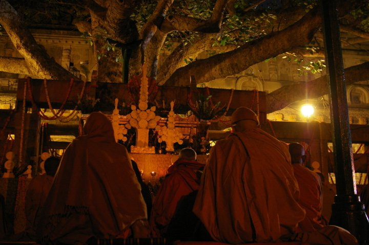 Under the Bodhi Tree -Bodhgaya, Bihar -an INCREDIBLE feeling to sit among the chanting monks during their evening prayers, sat there for hours and days on end, just enveloped in the vibes and the light. Can't describe it in words... So much gratitude for this existence!