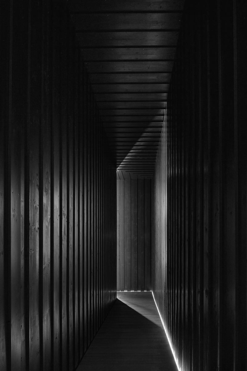 TADAO ANDO • Pavilion