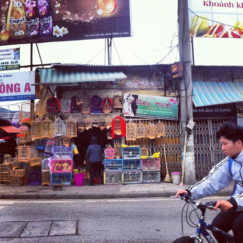 NTay_IG_Hanoi_19.jpg